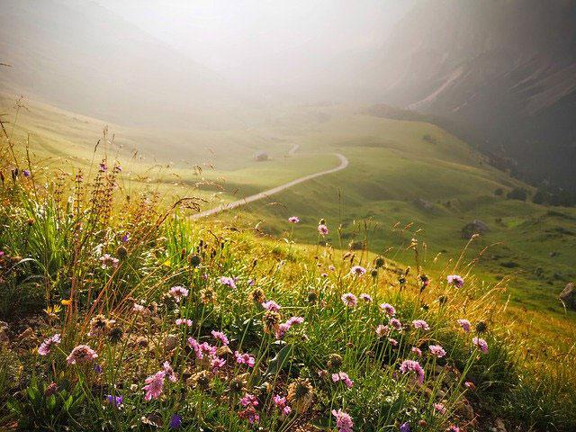 vacances d'été Alpes